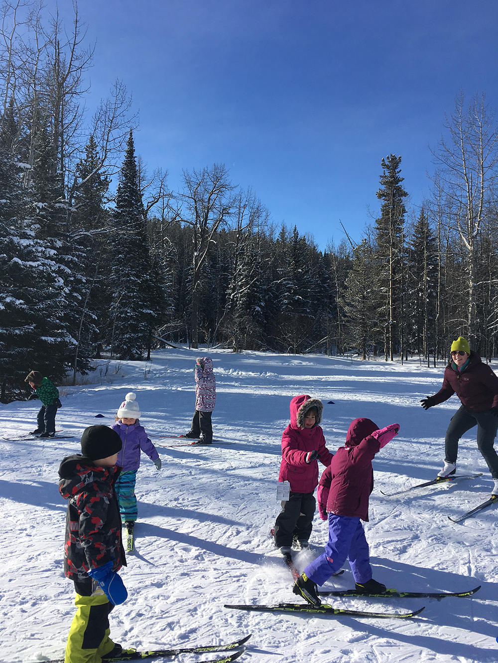 Kids in UCalgary crosscountry ski class