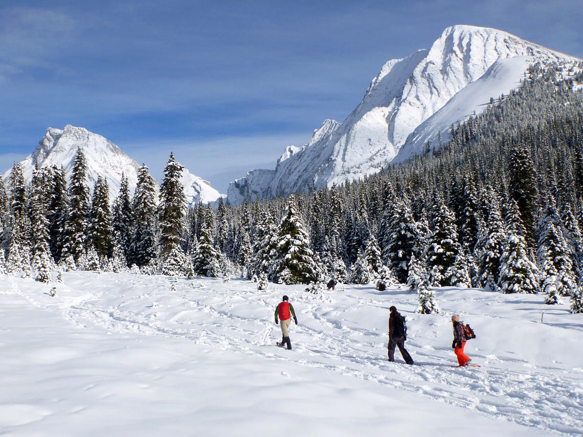 Snowshoeing with the UCalgary Outdoor Centre